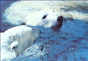 Рейган Ворд. Белые медведи
