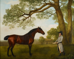 George Stubbs. John Gascoigne, the chief groom of the Prince of Wales with a horse