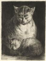 Жан-Жак де Буассье. Кошка с котенком
