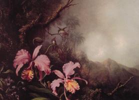 Мартин Джонсон Хед. Две орхидеи и колибри на фоне гор
