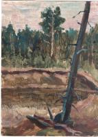 Arkady Pavlovich Laptev. Forest ravine