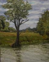 Валерий Федоров. Старое дерево на берегу