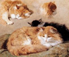 Генриетта Роннер-Книп. Наброски с рыжим полосатым котом