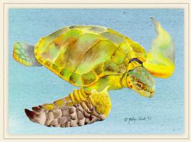 Джоселин Слек. Черепаха