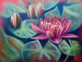 Larissa Lukaneva. Red Water Lily