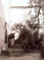Эдуардо Наранхо. Двор