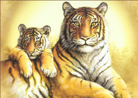 Иосиф Хаутман. Тигры