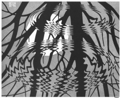 Мауриц Корнелис Эшер. Рифленая поверхность2