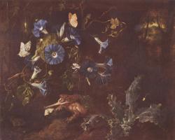 Отто Марсеус ван Шрик. Голубые вьюнки, жаба и насекомые