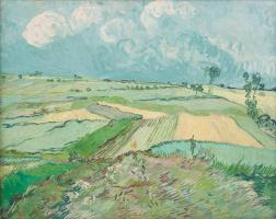 Пшеничные поля после дождя (Провинция Овер)