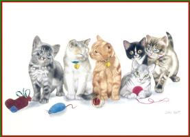 Нотт Лори. Компания котов