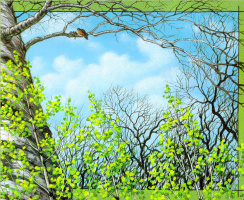 Кристофер Каньон. Деревья