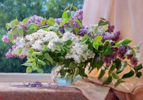 A bouquet of lilacs. 2005