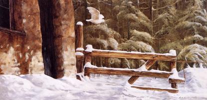Жиль Аршамбо. Лавка в снегу