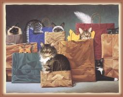 Лоуэлл Эрреро. Коты в пакетах