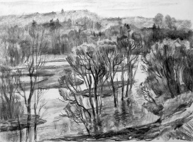 Oleg Borisovich Zakharov. The spill on the river Protva