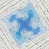 Daria Nurtazina. Four seasons of winter