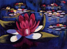 Дер Ван Хулст. Водяные лилии