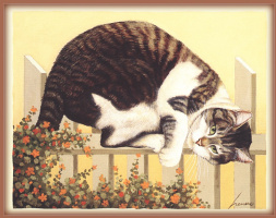 Лоуэлл Эрреро. Кот на заборе