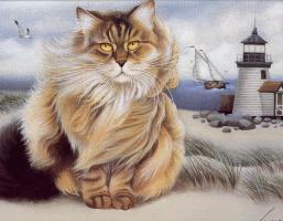 Лоуэлл Эрреро. Коты. Июль 95