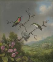 Мартин Джонсон Хед. Колибри и ветка цветущей яблони