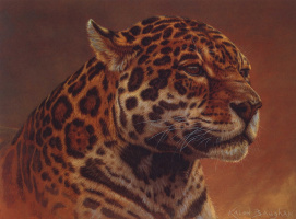 Калон Боган. Портрет ягуара
