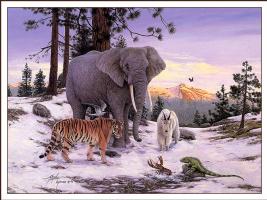 Стивен Лиман. Большой слон