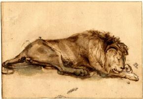 Рембрандт Харменс ван Рейн. Спящий лев