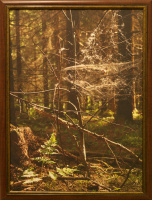 K.Greschuk. Forest abstraction