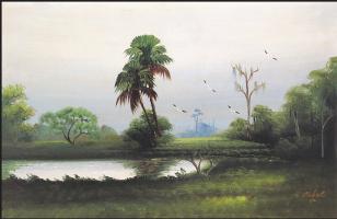 Гарольд Ньютон. Тропический пейзаж 54