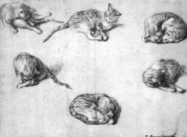 Томас Гейнсборо. Эскиз шести кошек