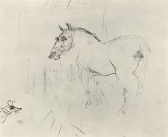 Анри де Тулуз-Лотрек. Маленький пони и собака