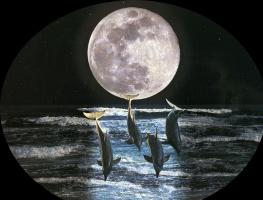 Барри Чал. Лунный свет
