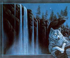 Кристофер Каньон. Одинокий волк