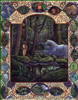Линн Черри. Затерянный лес