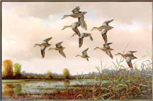 Оуэн Громм. Первый голубокрылый полет