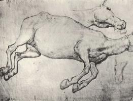 Théodore Géricault. Study of a dead horse