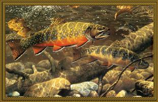 Марк Суссино. Рыбы