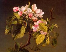 Мартин Джонсон Хед. Цветущая яблоня