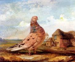 Джеймс Уорд. Птица