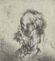 Ян Ливенс. Профиль бородатого старика в рубашке