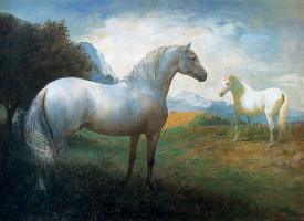 Хосе Мануэль Гомес. Белые лошади