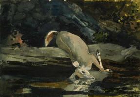 Уинслоу Хомер. Упавший олень