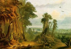 Карл Бодмер. Зеленые деревья