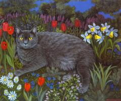 Мими Ванг Олсен. Вечерняя прогулка кота
