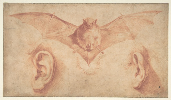 Jose de Ribera. A Bat and Two Ears