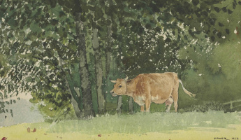 Winslow Homer. Cow in pasture