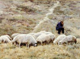 Цзян Хуэй. Старый пастух