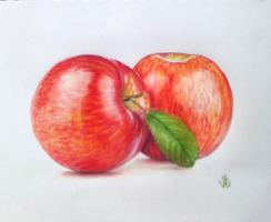 Sophie Wasilewska. Red apples