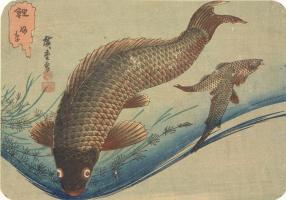 "Утагава Хиросигэ. Карп. Серия ""Рыбы"""